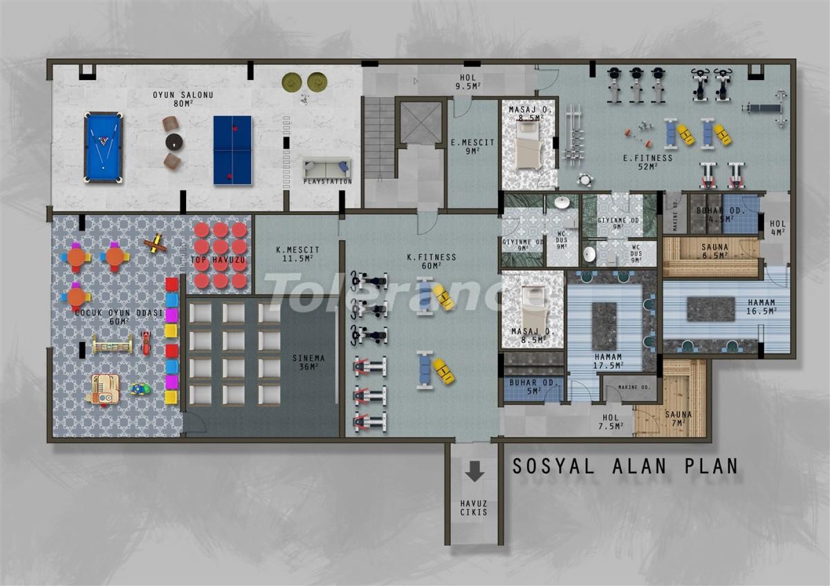 Новый проект в Каргиджаке с отдельной инфраструктурой для женщин и мужчин - 20733 | Tolerance Homes